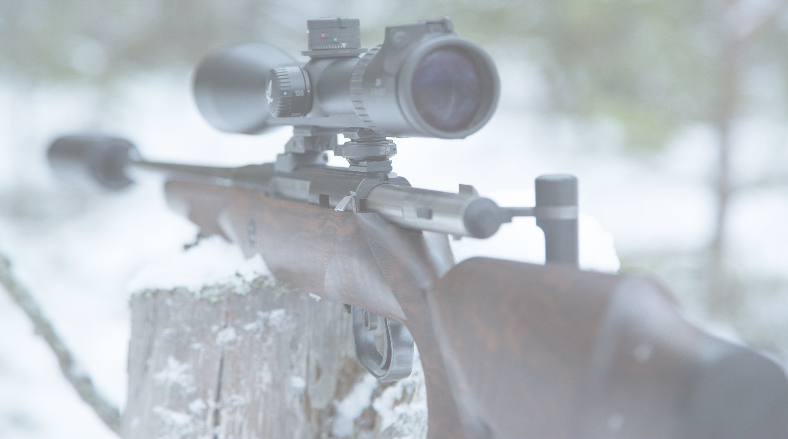 Welcome - to the website of Lynx Rifles.